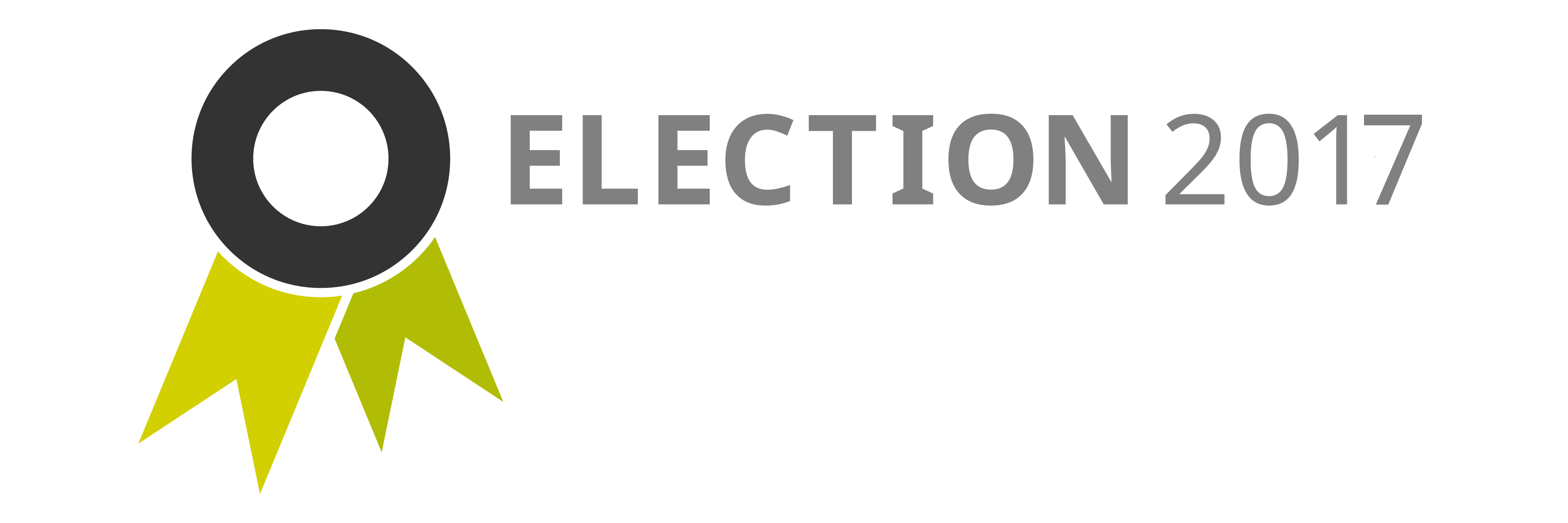 election website